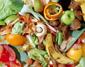 Picture of Food Waste